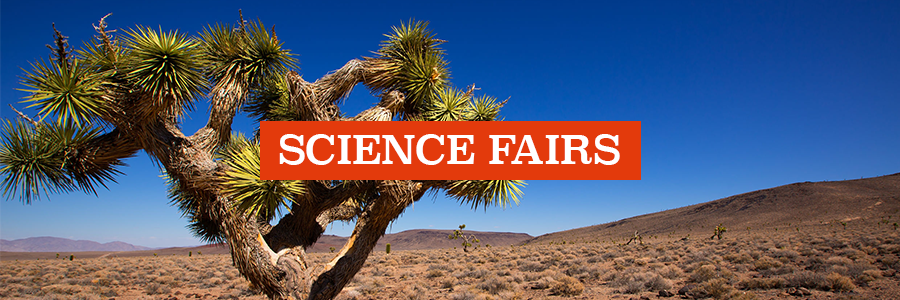 science-fairs