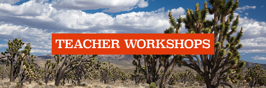 teacherworkshops