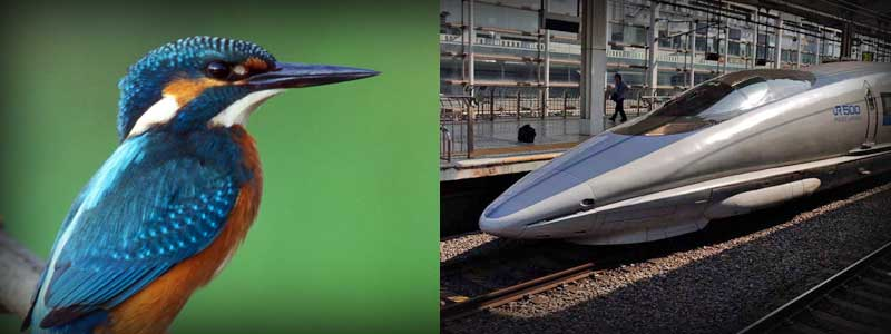 englishkidzone-biomimicry-kingfisher-and-train